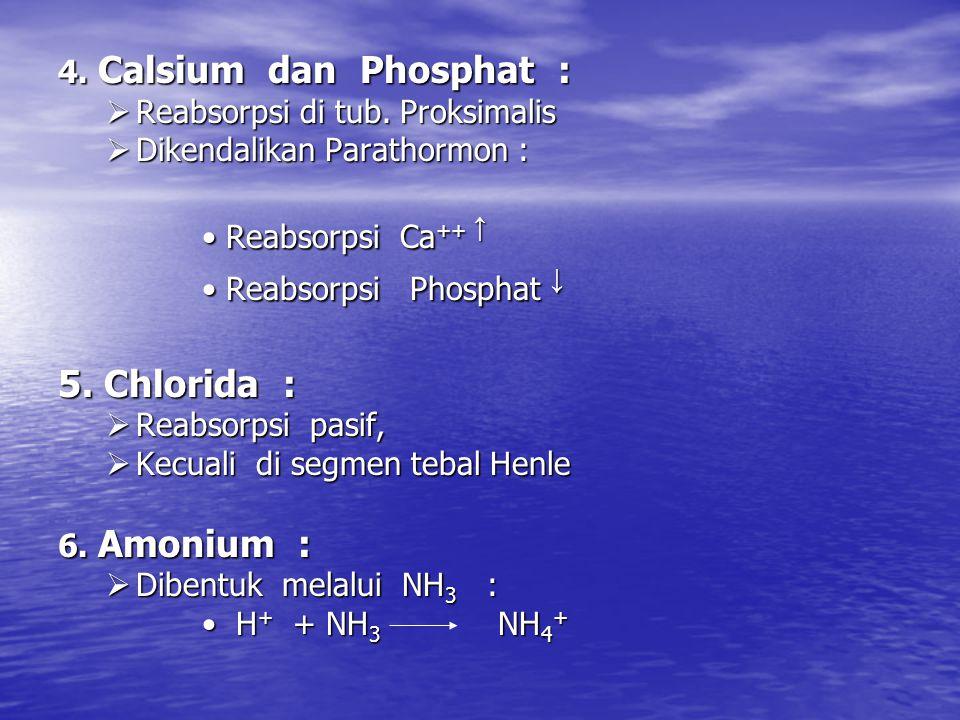 4.Calsium dan Phosphat :  Reabsorpsi di tub.