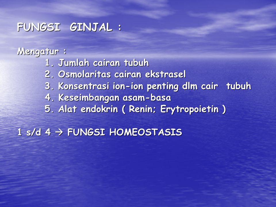 N E F R O N : Unit fungsional ginjal  1,3 juta / ginjal Terdiri dari : 1.