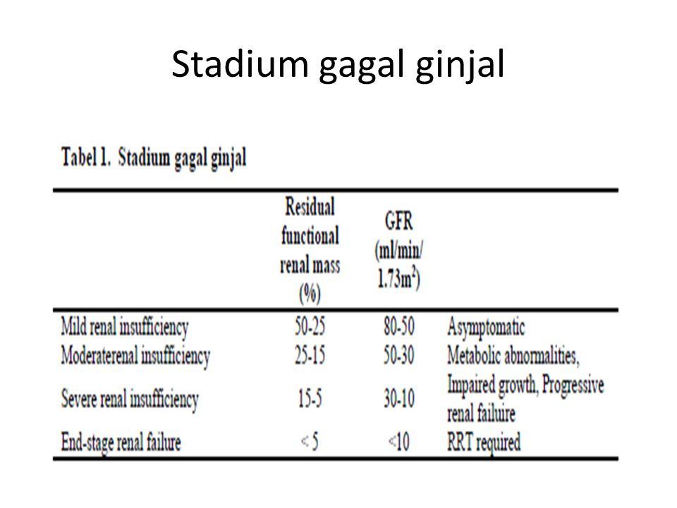 Stadium gagal ginjal