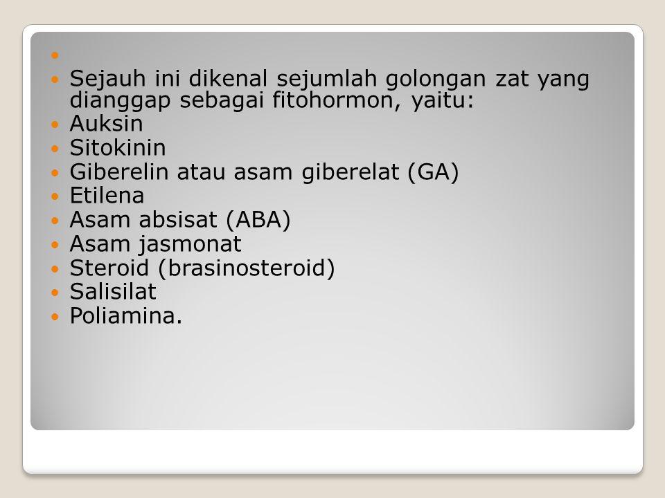 Sejauh ini dikenal sejumlah golongan zat yang dianggap sebagai fitohormon, yaitu: Auksin Sitokinin Giberelin atau asam giberelat (GA) Etilena Asam abs