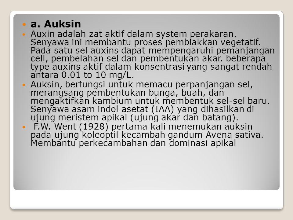 a. Auksin Auxin adalah zat aktif dalam system perakaran. Senyawa ini membantu proses pembiakkan vegetatif. Pada satu sel auxins dapat mempengaruhi pem