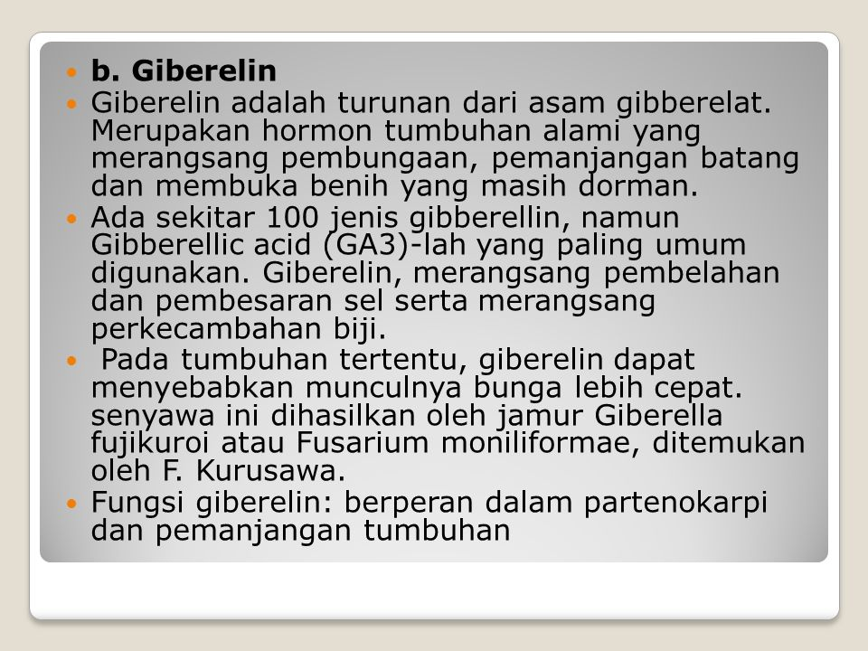 b. Giberelin Giberelin adalah turunan dari asam gibberelat. Merupakan hormon tumbuhan alami yang merangsang pembungaan, pemanjangan batang dan membuka