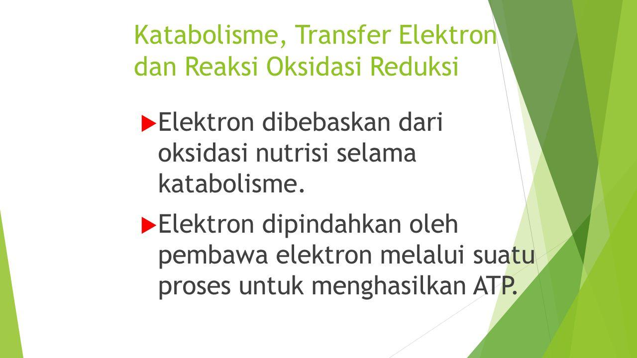 Katabolisme, Transfer Elektron dan Reaksi Oksidasi Reduksi  Elektron dibebaskan dari oksidasi nutrisi selama katabolisme.  Elektron dipindahkan oleh