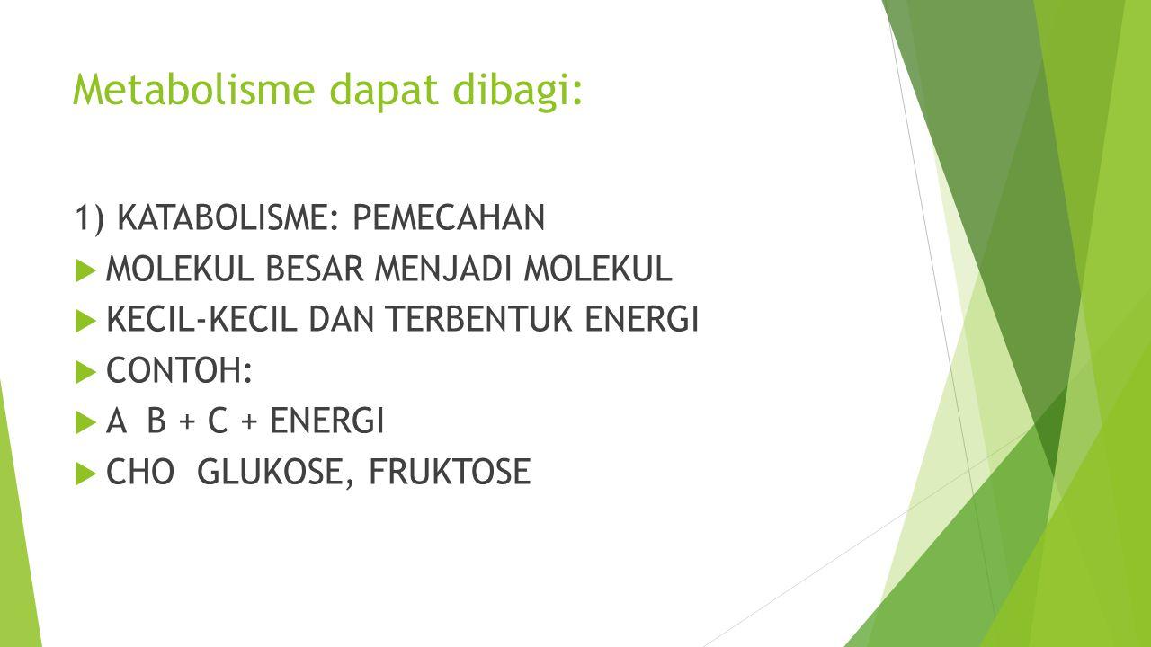 Metabolisme dapat dibagi: 1) KATABOLISME: PEMECAHAN  MOLEKUL BESAR MENJADI MOLEKUL  KECIL-KECIL DAN TERBENTUK ENERGI  CONTOH:  A B + C + ENERGI 