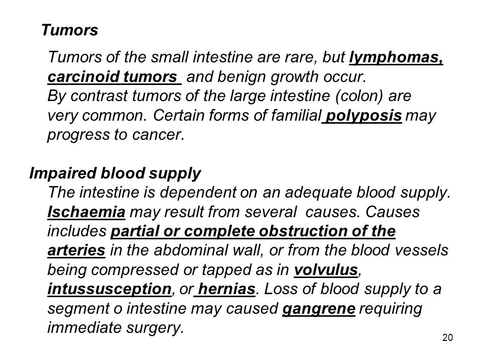 20 Tumors Tumors of the small intestine are rare, but lymphomas, carcinoid tumors and benign growth occur. By contrast tumors of the large intestine (