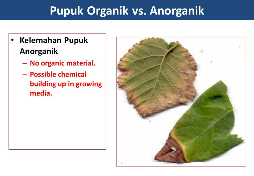 Pupuk Organik vs. Anorganik Kelemahan Pupuk Anorganik – No organic material. – Possible chemical building up in growing media.
