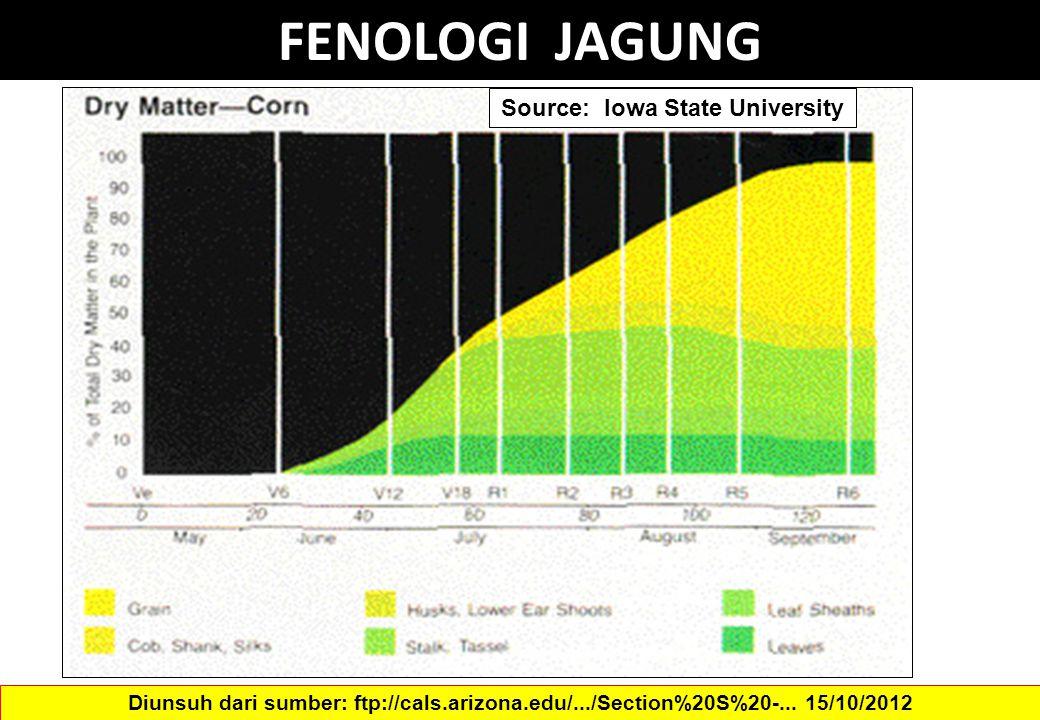 FENOLOGI JAGUNG Source: Iowa State University Diunsuh dari sumber: ftp://cals.arizona.edu/.../Section%20S%20-... 15/10/2012