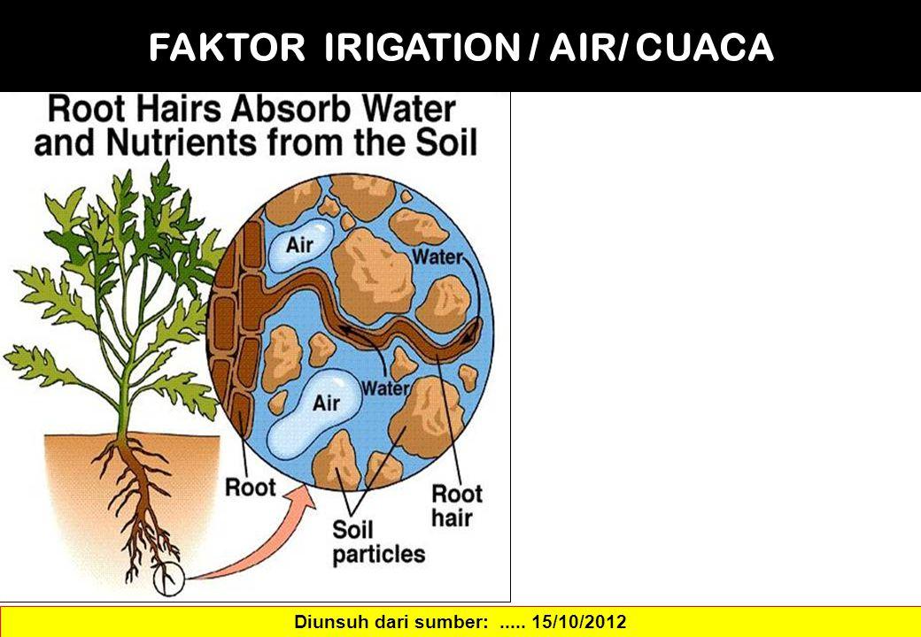 FAKTOR IRIGATION / AIR/ CUACA Diunsuh dari sumber:..... 15/10/2012