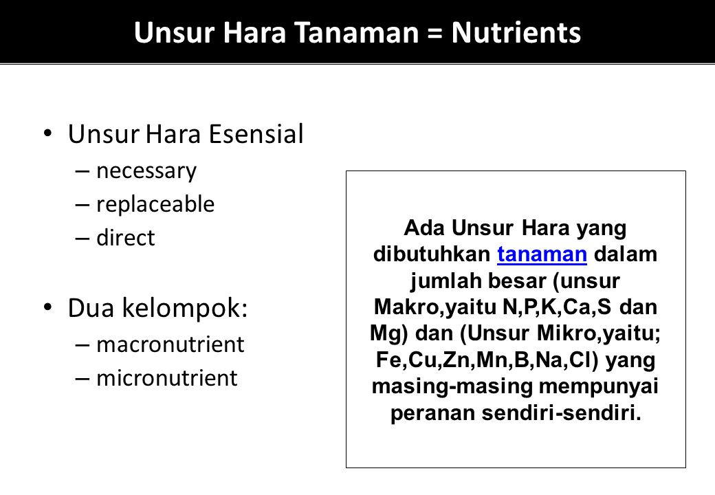 Unsur Hara Tanaman = Nutrients Unsur Hara Esensial – necessary – replaceable – direct Dua kelompok: – macronutrient – micronutrient Ada Unsur Hara yan