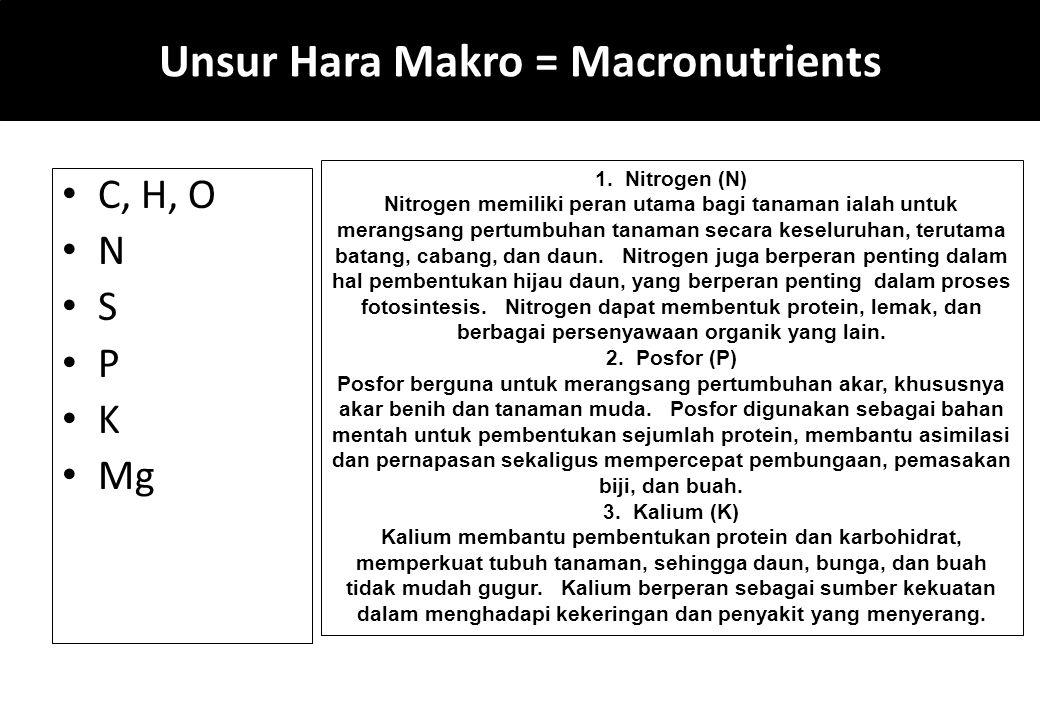 Unsur Hara Makro = Macronutrients C, H, O N S P K Mg 1. Nitrogen (N) Nitrogen memiliki peran utama bagi tanaman ialah untuk merangsang pertumbuhan tan