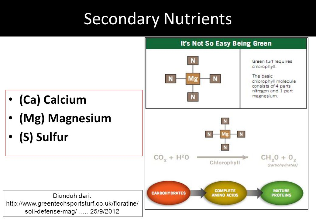 Secondary Nutrients (Ca) Calcium (Mg) Magnesium (S) Sulfur Diunduh dari: http://www.greentechsportsturf.co.uk/floratine/ soil-defense-mag/ …..