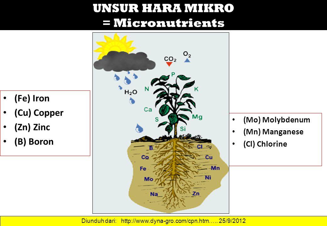 UNSUR HARA MIKRO = Micronutrients (Fe) Iron (Cu) Copper (Zn) Zinc (B) Boron (Mo) Molybdenum (Mn) Manganese (Cl) Chlorine Diunduh dari: http://www.dyna