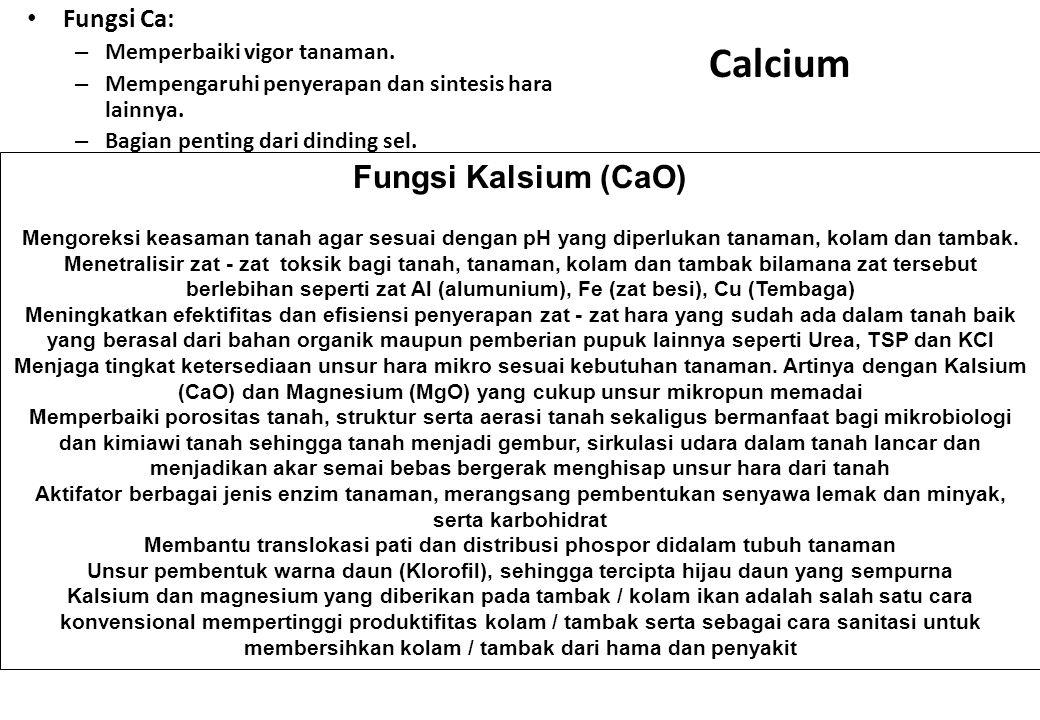 Calcium Fungsi Ca: – Memperbaiki vigor tanaman. – Mempengaruhi penyerapan dan sintesis hara lainnya. – Bagian penting dari dinding sel. Fungsi Kalsium