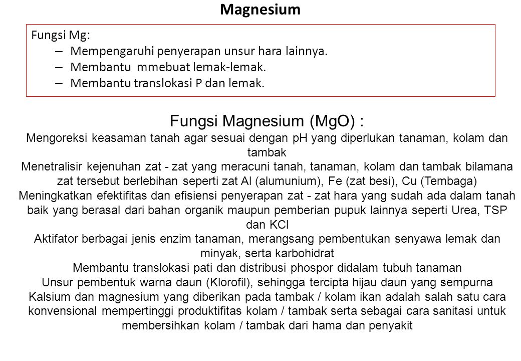 Magnesium Fungsi Mg: – Mempengaruhi penyerapan unsur hara lainnya. – Membantu mmebuat lemak-lemak. – Membantu translokasi P dan lemak. Fungsi Magnesiu