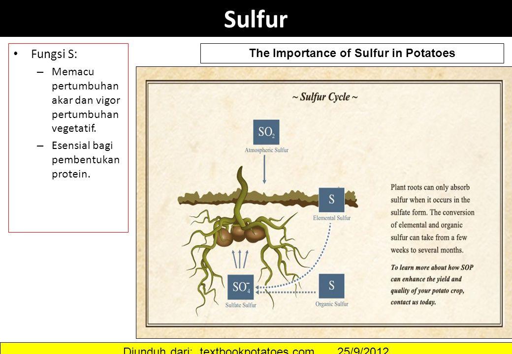 Sulfur Fungsi S: – Memacu pertumbuhan akar dan vigor pertumbuhan vegetatif. – Esensial bagi pembentukan protein. The Importance of Sulfur in Potatoes