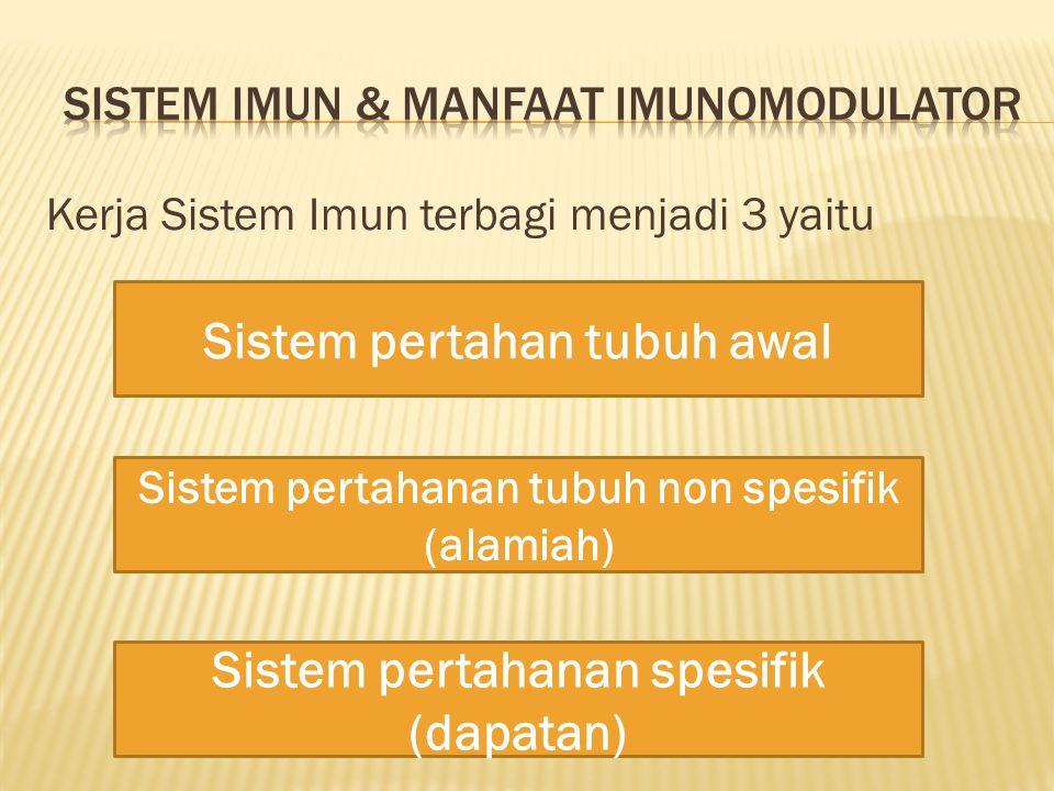 Kerja Sistem Imun terbagi menjadi 3 yaitu Sistem pertahan tubuh awal Sistem pertahanan tubuh non spesifik (alamiah) Sistem pertahanan spesifik (dapata