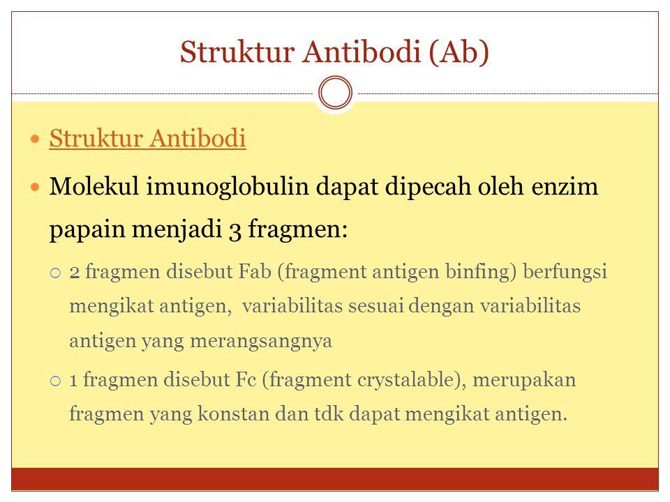 Klasifikasi Antibodi (Ab) Klasifikasi imunoglobulin : Klasifikasi imunoglobulin  IgG mempunyai rantai gama (γ)  IgM mempunyai rantai mu (µ)  IgA mempunyai rantai alfa (α)  IgD mempunyai rantai delta (δ)  IgE mempunyai rantai epsilon (ε) Karakteristik Imunoglobulin