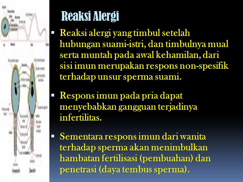 Reaksi Alergi  Reaksi alergi yang timbul setelah hubungan suami-istri, dan timbulnya mual serta muntah pada awal kehamilan, dari sisi imun merupakan