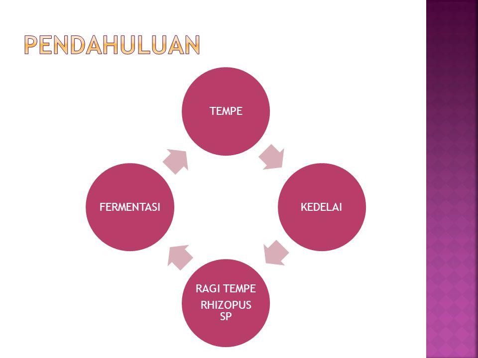 Tempe merupakan bahan pangan asli Indonesia yang dibuat dari bahan baku kedelai melalui proses fermentasi oleh Rhizopus sp.