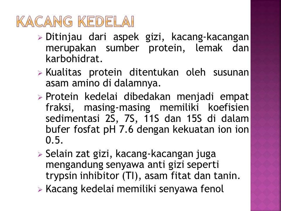  Ditinjau dari aspek gizi, kacang-kacangan merupakan sumber protein, lemak dan karbohidrat.