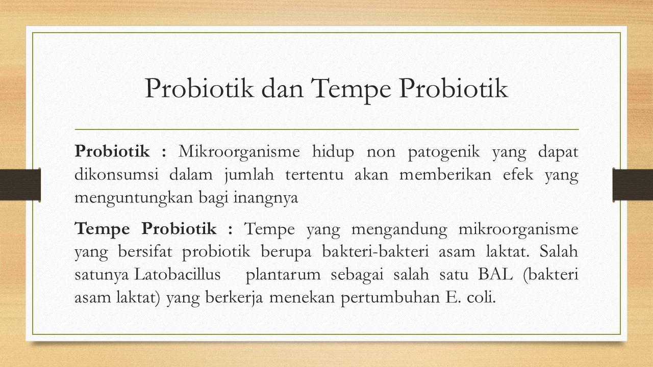 Probiotik dan Tempe Probiotik Probiotik : Mikroorganisme hidup non patogenik yang dapat dikonsumsi dalam jumlah tertentu akan memberikan efek yang menguntungkan bagi inangnya Tempe Probiotik : Tempe yang mengandung mikroorganisme yang bersifat probiotik berupa bakteri-bakteri asam laktat.