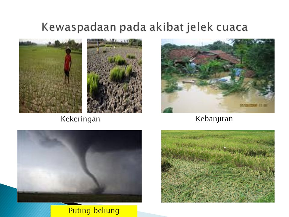 Kekeringan Kebanjiran Puting beliung