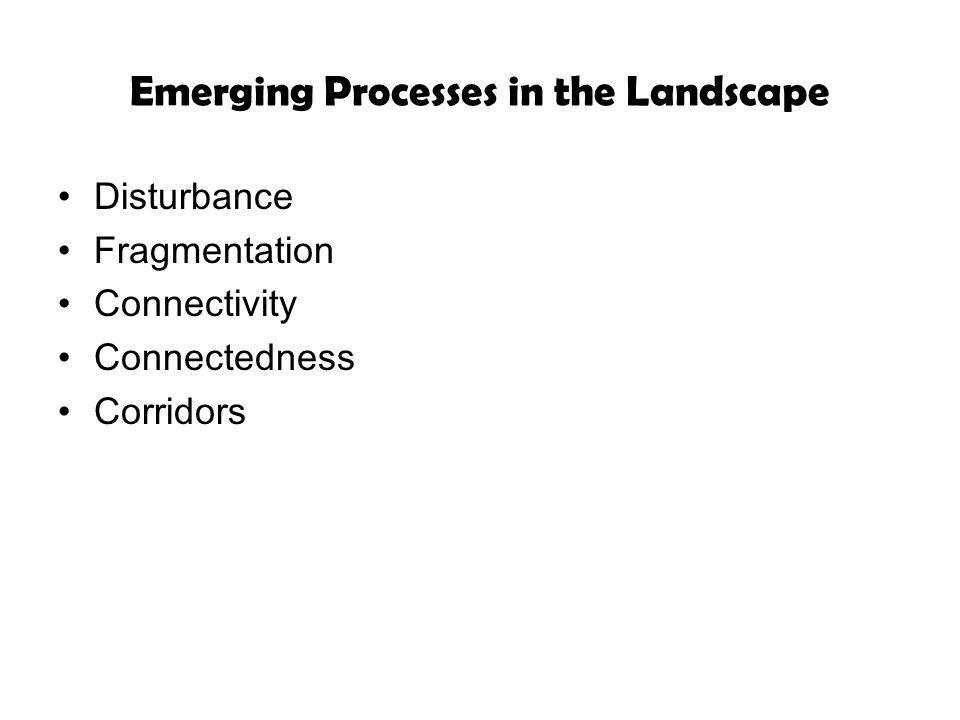 Emerging Processes in the Landscape Disturbance Fragmentation Connectivity Connectedness Corridors
