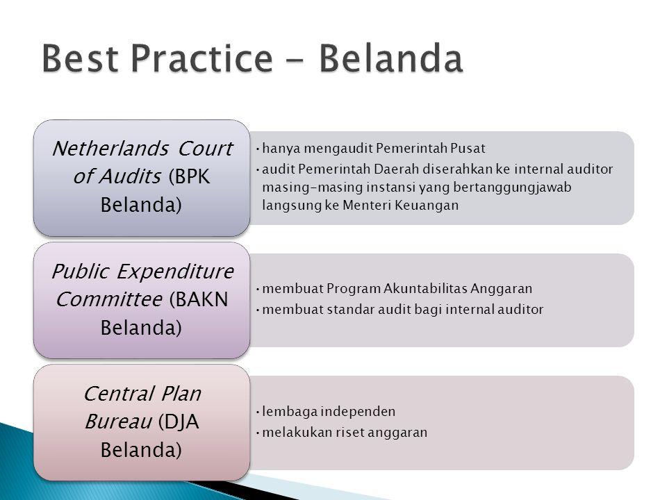 hanya mengaudit Pemerintah Pusat audit Pemerintah Daerah diserahkan ke internal auditor masing-masing instansi yang bertanggungjawab langsung ke Mente