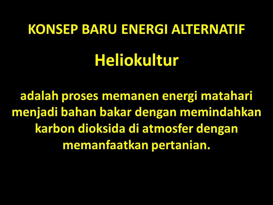 KONSEP BARU ENERGI ALTERNATIF Heliokultur adalah proses memanen energi matahari menjadi bahan bakar dengan memindahkan karbon dioksida di atmosfer den