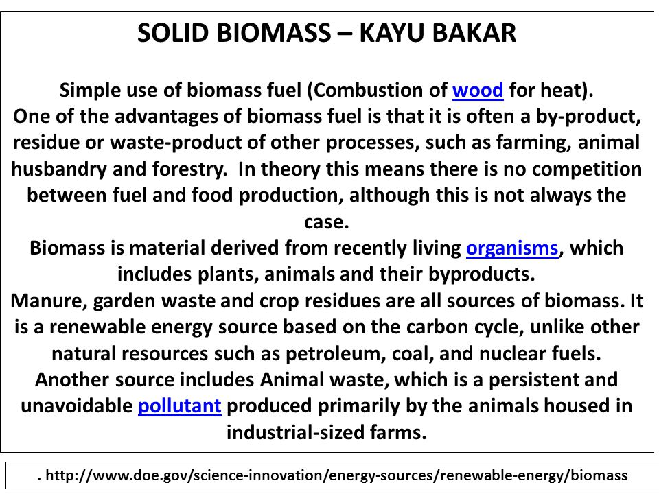 SOLID BIOMASS – KAYU BAKAR There are also agricultural products specifically being grown for biofuel production.