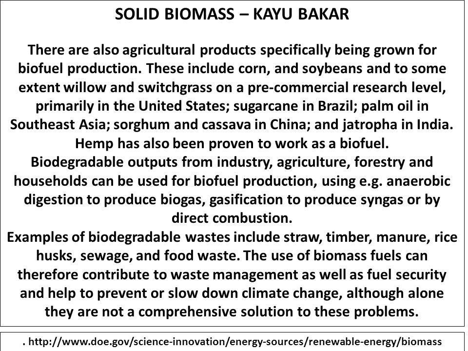 SOLID BIOMASS – KAYU BAKAR There are also agricultural products specifically being grown for biofuel production. These include corn, and soybeans and