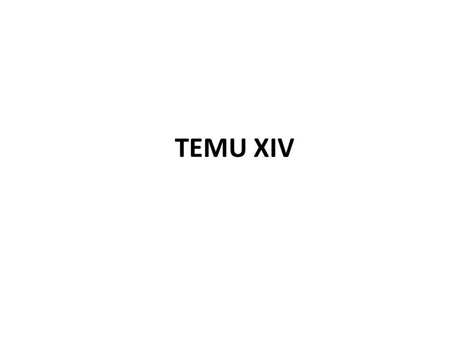 TEMU XIV