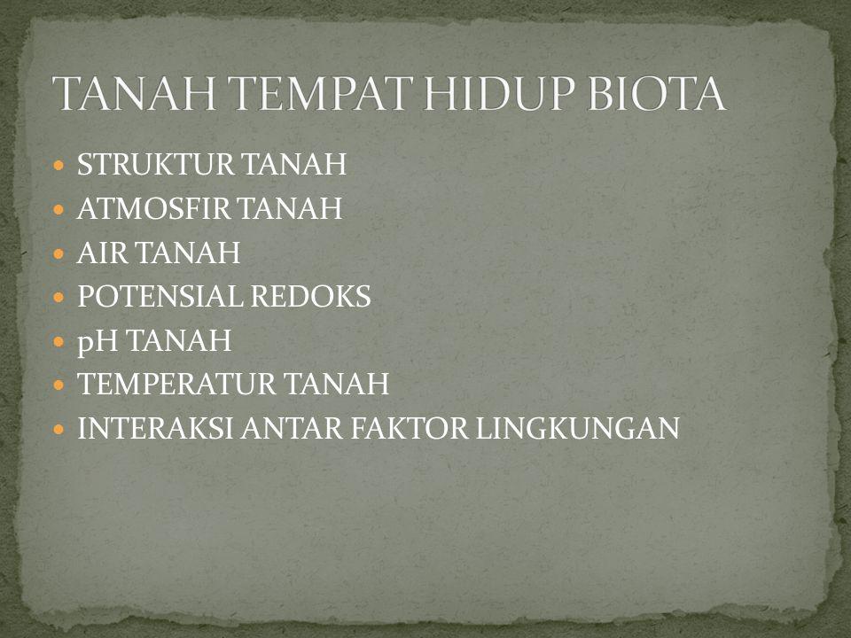 STRUKTUR TANAH ATMOSFIR TANAH AIR TANAH POTENSIAL REDOKS pH TANAH TEMPERATUR TANAH INTERAKSI ANTAR FAKTOR LINGKUNGAN