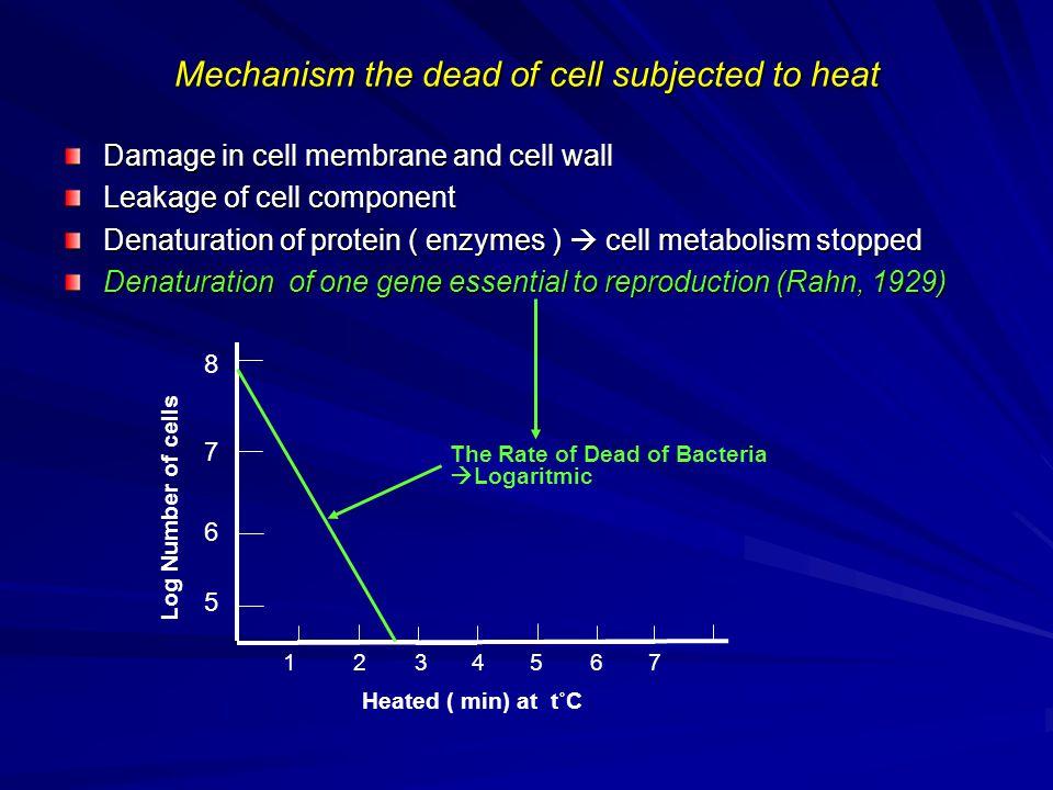 7 6 5 8 Log Number of cells 1234567 Heated ( min) at t˚C Dead of cells  Logaritmic Activation Consist of two strains BEBERAPA PENYIMPANGAN YANG MUNGKIN TERJADI