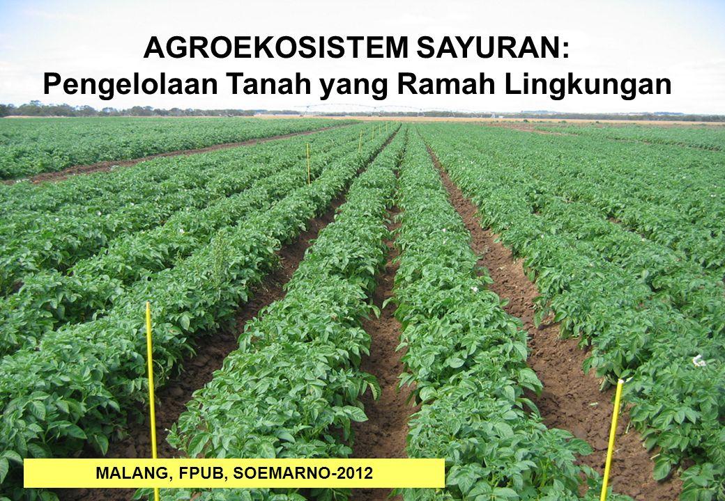 1 AGROEKOSISTEM SAYURAN: Pengelolaan Tanah yang Ramah Lingkungan MALANG, FPUB, SOEMARNO-2012