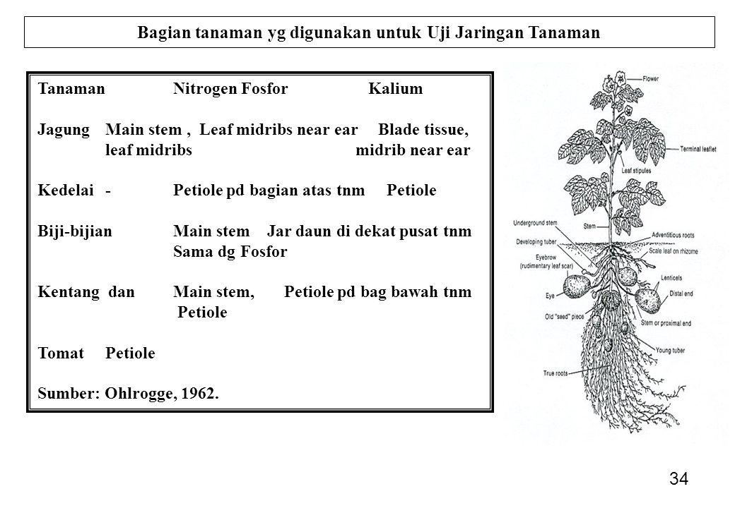34 Bagian tanaman yg digunakan untuk Uji Jaringan Tanaman Tanaman NitrogenFosfor Kalium JagungMain stem, Leaf midribs near ear Blade tissue, leaf midribs midrib near ear Kedelai-Petiole pd bagian atas tnm Petiole Biji-bijianMain stem Jar daun di dekat pusat tnm Sama dg Fosfor Kentang danMain stem, Petiole pd bag bawah tnm Petiole TomatPetiole Sumber: Ohlrogge, 1962.