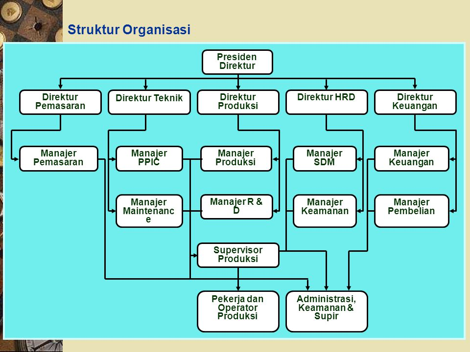 Presiden Direktur Direktur Pemasaran Direktur Teknik Direktur Produksi Direktur HRDDirektur Keuangan Manajer Pemasaran Manajer PPIC Manajer Maintenanc
