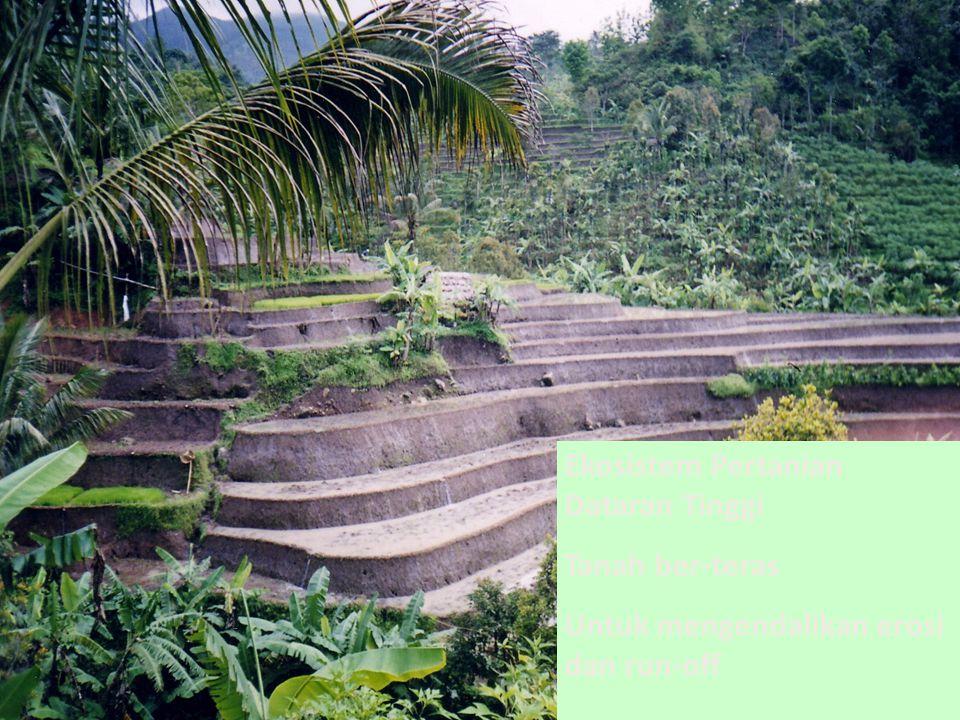 Ekosistem Pertanian Dataran Tinggi Tanah ber-teras Untuk mengendalikan erosi dan run-off