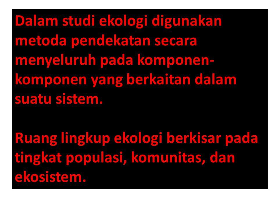 Contoh yang terdapat di Indonesia adalah terbentuknya suksesi di Gunung Krakatau yang pernah meletus pada tahun 1883.