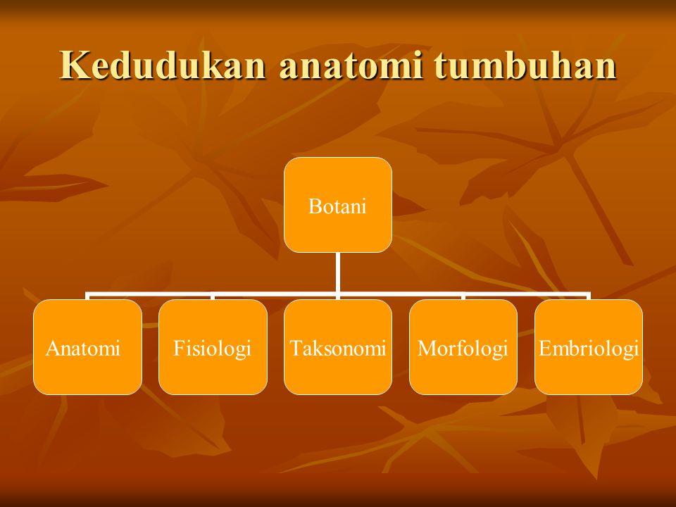 Kedudukan anatomi tumbuhan Botani AnatomiFisiologiTaksonomiMorfologiEmbriologi