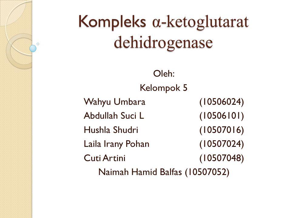 Pendahuluan Kompleks α-ketoglutarat dehidrogenase merupakan kompleks multi-enzim yang terbentuk dari 3 jenis enzim yang berbeda Kompleks α-ketoglutarat dehidrogenase ini berperan sebagai salah satu katalis dalam siklus TCA Kompleks α-ketoglutarat dehidrogenase memerlukan Co-factor Nama lain : oksoglutarat dekarboksilase