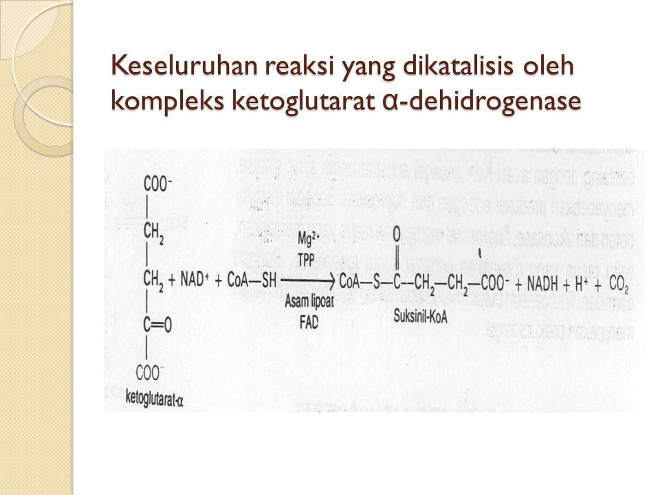 Keseluruhan reaksi yang dikatalisis oleh kompleks ketoglutarat α -dehidrogenase
