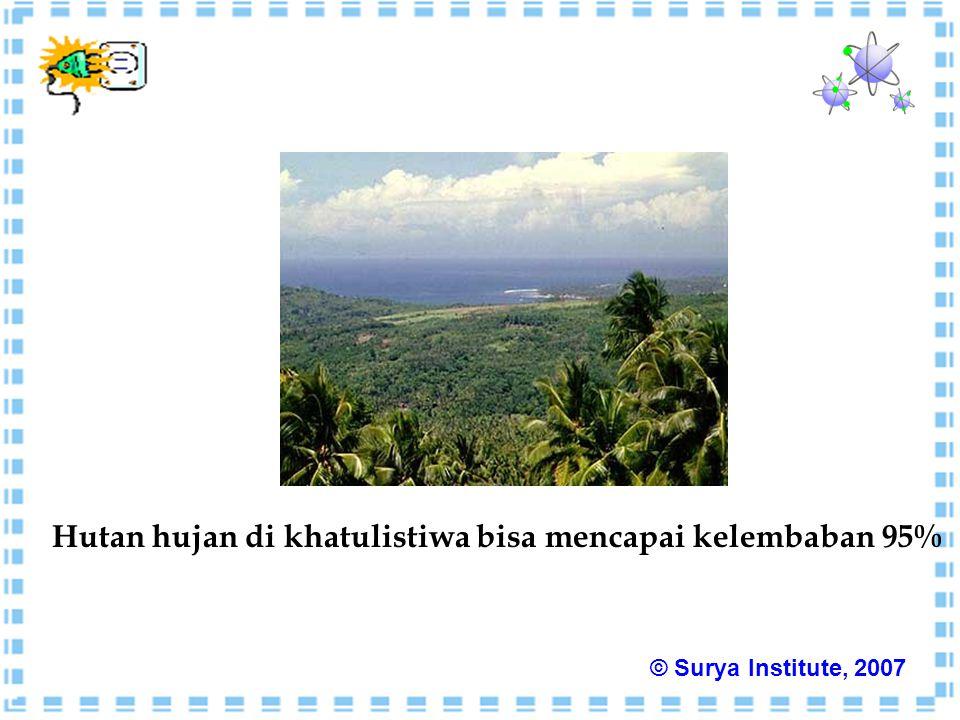 Hutan hujan di khatulistiwa bisa mencapai kelembaban 95% © Surya Institute, 2007