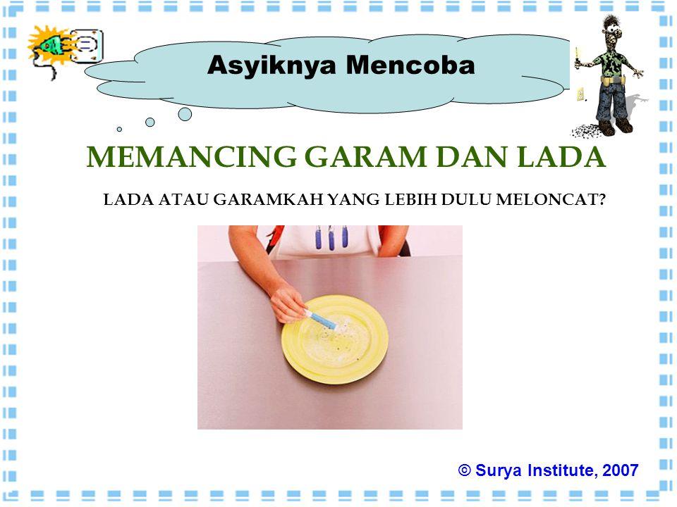 Asyiknya Mencoba MEMANCING GARAM DAN LADA LADA ATAU GARAMKAH YANG LEBIH DULU MELONCAT? © Surya Institute, 2007