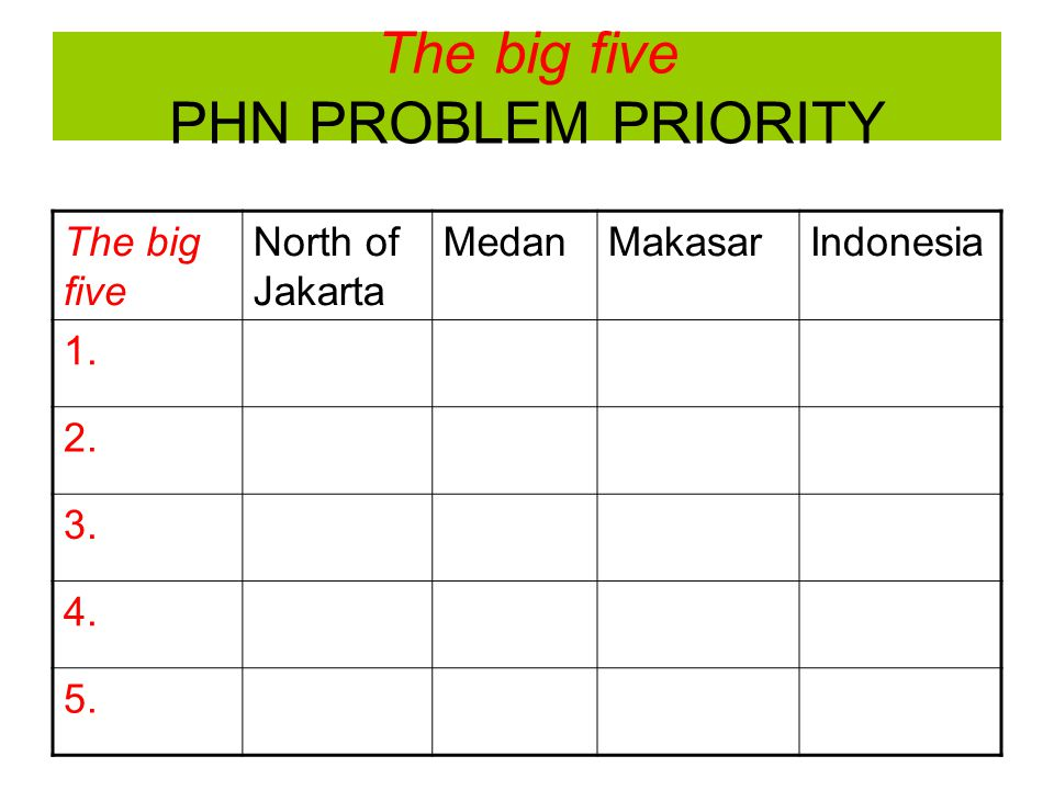 The big five PHN PROBLEM PRIORITY The big five North of Jakarta MedanMakasarIndonesia 1. 2. 3. 4. 5.