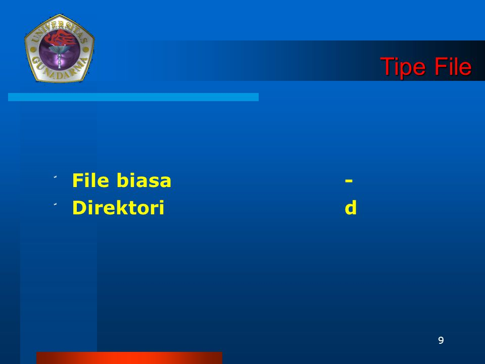 9 Tipe File ّ File biasa - ّ Direktorid