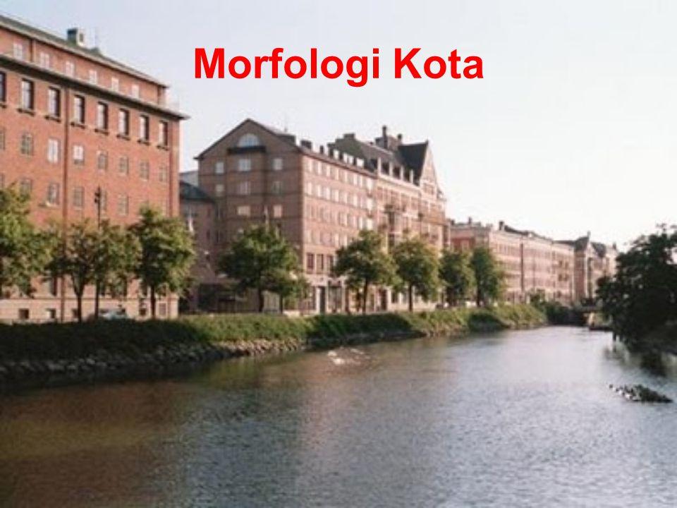 Morfologi kota merupakan kesatuan organik elemen- elemen pembentuk kota Morfologi kota terbentuk melalui proses yang panjang, setiap perubahan bentuk kawasan secara morfologis dapat memberikan arti serta manfaat yang sangat berharga bagi penanganan perkembangan suatu kawasan kota.