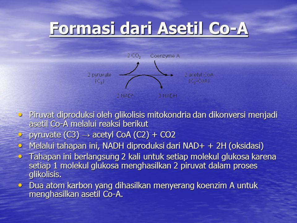 Formasi dari Asetil Co-A Piruvat diproduksi oleh glikolisis mitokondria dan dikonversi menjadi asetil Co-A melalui reaksi berikut Piruvat diproduksi oleh glikolisis mitokondria dan dikonversi menjadi asetil Co-A melalui reaksi berikut pyruvate (C3) → acetyl CoA (C2) + CO2 pyruvate (C3) → acetyl CoA (C2) + CO2 Melalui tahapan ini, NADH diproduksi dari NAD+ + 2H (oksidasi) Melalui tahapan ini, NADH diproduksi dari NAD+ + 2H (oksidasi) Tahapan ini berlangsung 2 kali untuk setiap molekul glukosa karena setiap 1 molekul glukosa menghasilkan 2 piruvat dalam proses glikolisis.