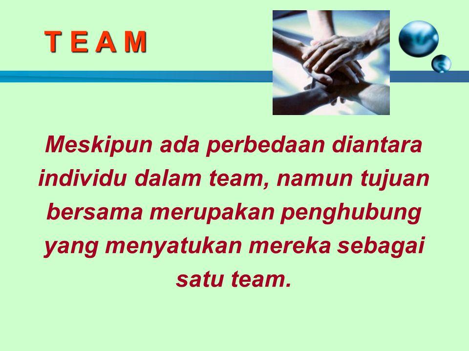 Meskipun ada perbedaan diantara individu dalam team, namun tujuan bersama merupakan penghubung yang menyatukan mereka sebagai satu team.