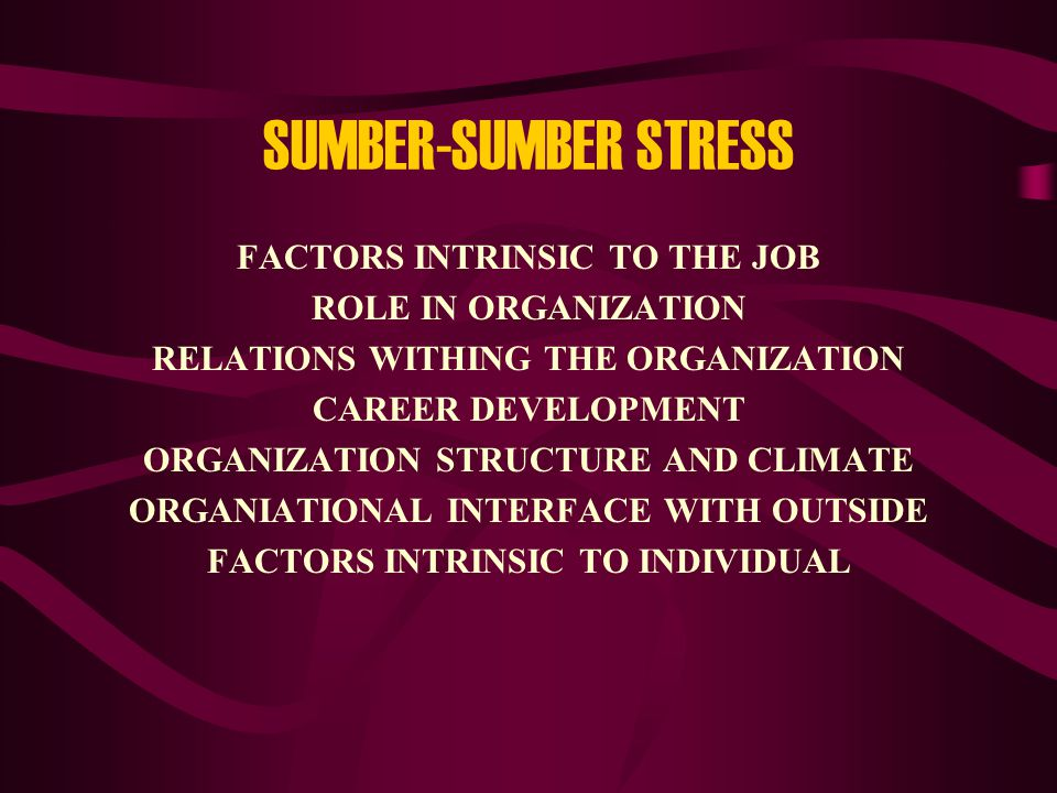 SUMBER-SUMBER STRESS FACTORS INTRINSIC TO THE JOB ROLE IN ORGANIZATION RELATIONS WITHING THE ORGANIZATION CAREER DEVELOPMENT ORGANIZATION STRUCTURE AND CLIMATE ORGANIATIONAL INTERFACE WITH OUTSIDE FACTORS INTRINSIC TO INDIVIDUAL